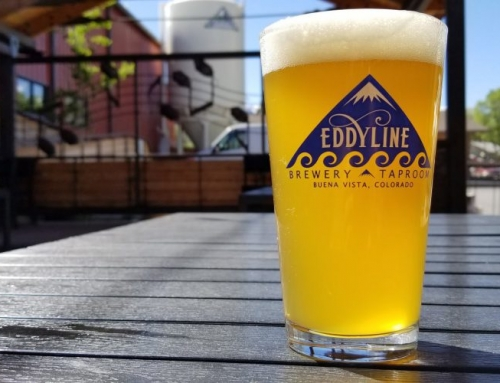 New Summer in the Citra Beer Release